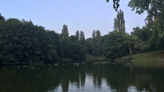 Teich im Stadtpark Bochum